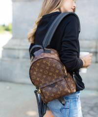 Рюкзак Louis Vuitton Palm Spring Backpack Medium